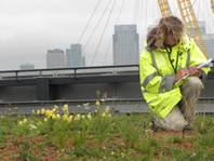 BRITISH FLORA Planting the Seeds for a Greener Tomorrow