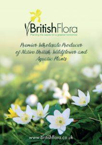 British Flora Brochure