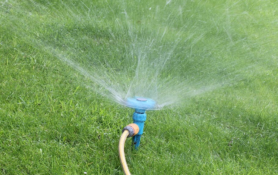 Lawn Care During a Drought