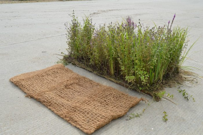 unplanted and pre planted coir pallet